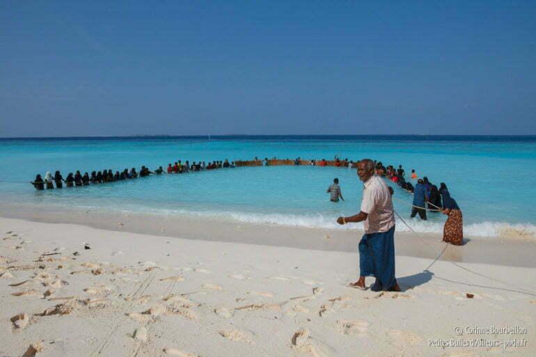 Pêche traditionnelle collective à Utheemu. Maldives, février 2014.