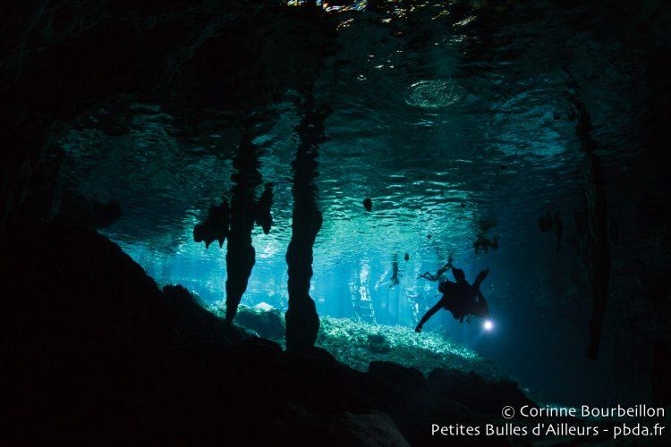 Grand Cenote. Mexique, juillet 2014.