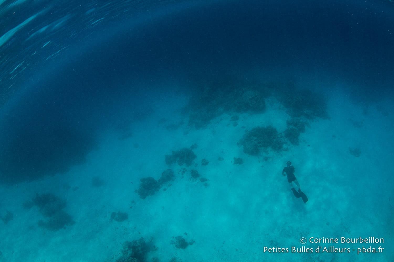 Maldives. February 2014.