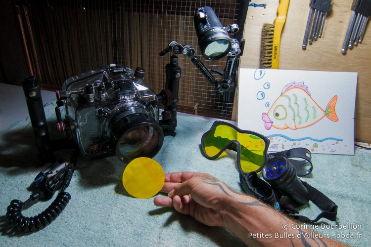 Prêt pour une plongée fluo ? Kri Eco Resort, Raja Ampat, janvier 2015.