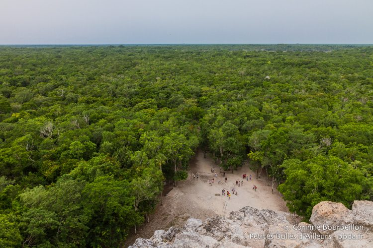From the top of the pyramid of Cobá, we see over the jungle and we guess the sea, on the horizon. Smaller pyramids are still buried in the vegetation. Yucatán, Mexico, July 2014.