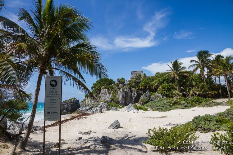 At the foot of the cliffs of Tulum, a protected beach, where turtles come to lay. Quintana Roo, Mexico, July 2014.