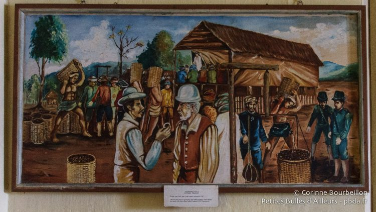 The museum of Banda Neira presents some paintings evoking the trade of the nutmeg by the Dutchmen, precious spice which pushed at the time only in the archipelago of Banda.