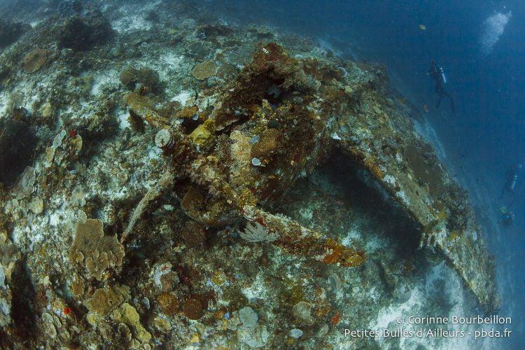 (Wai Plane Wreck, Raja Ampat, Papouasie occidentale, Indonésie, novembre 2015.)