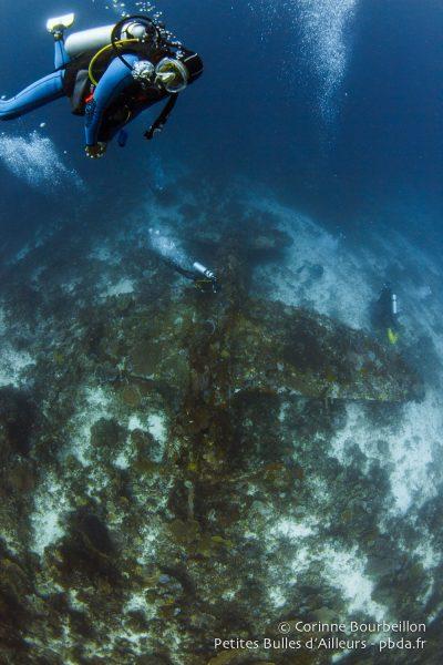 Wai Plane Wreck. (Raja Ampat, Papouasie occidentale, Indonésie, novembre 2015.)