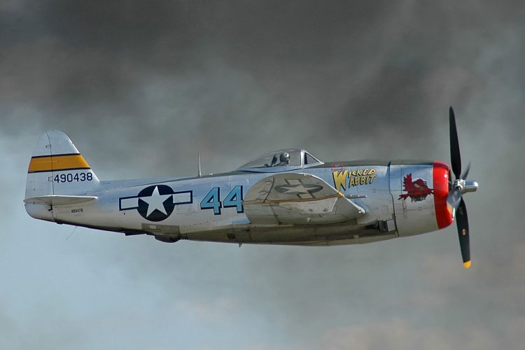 P-47D en vol, Tennessee Museum of Aviation. (Source : Kogo / Wikimédia)
