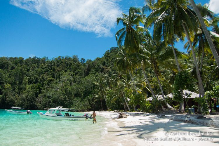 The Triton Bay Divers beach, a windy day and great sun. (Aiduma Island, West Papua, Indonesia, March 2016.)
