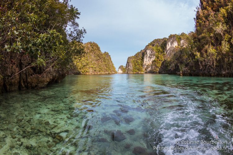 Des îles vierges, couvertes de jungle. (Misool, Raja Ampat, Papouasie occidentale, Indonésie, novembre 2015.)