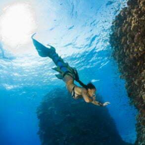 Les sirènes existent, la preuve... (Mer Rouge, Safaga, Égypte, octobre 2016)