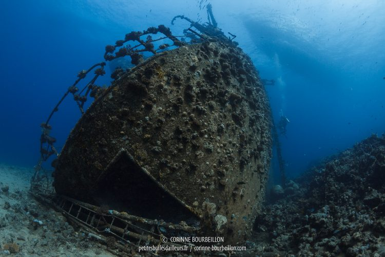 The stern of the immense Giannis D, about twenty meters deep. (Abu Nuhas, Red Sea, Egypt, October 2016)