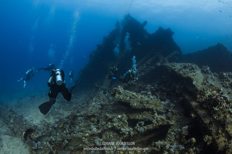 The oldest Carnatic wreck lies at the foot of the Abu Nuhas Reef since 1901. (Red Sea, Egypt)