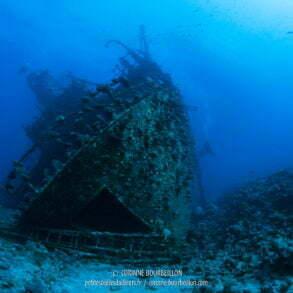 La proue du Giannis D, énorme. (Abu Nuhas, Mer Rouge, Égypte)