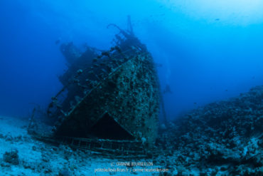 The bow of Giannis D, huge. (Abu Nuhas, Red Sea, Egypt)