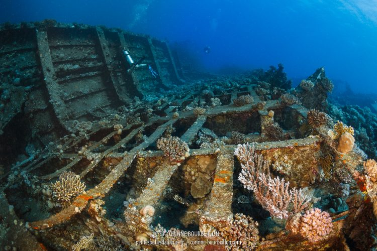 This part of the hull of the Giannis D is nothing more than a pile of scrap metal. (Abu Nuhas, Red Sea, Egypt)