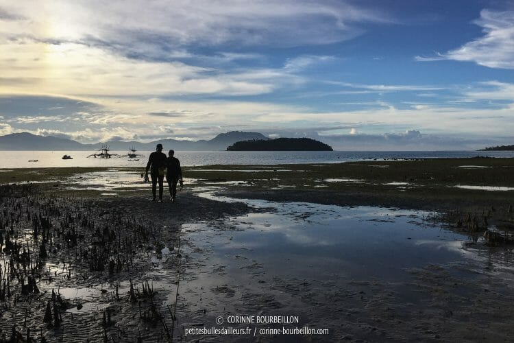 Retour des plongeurs à travers la mangrove, en fin de journée. (Romblon, Philippines, mars 2017)