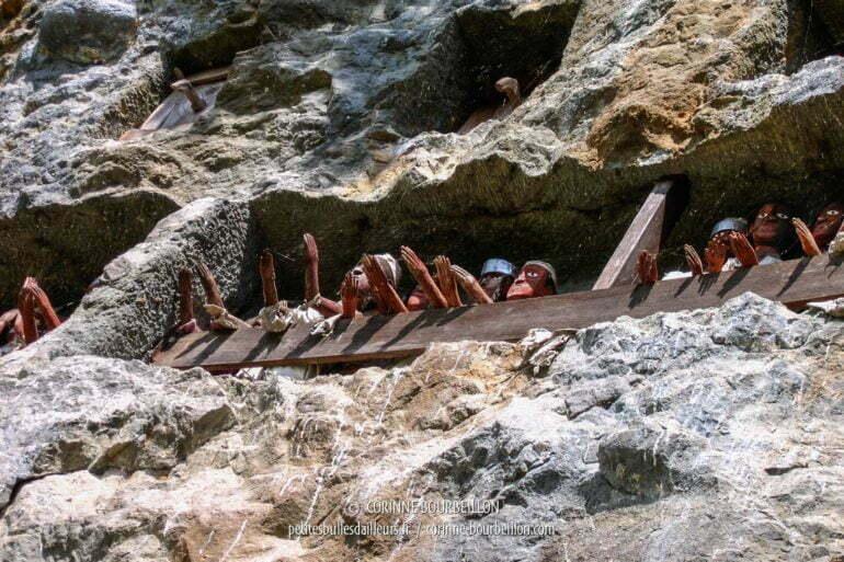 La falaise des tau-tau à Lemo. (Pays Toraja, Sulawesi. Juillet 2007)