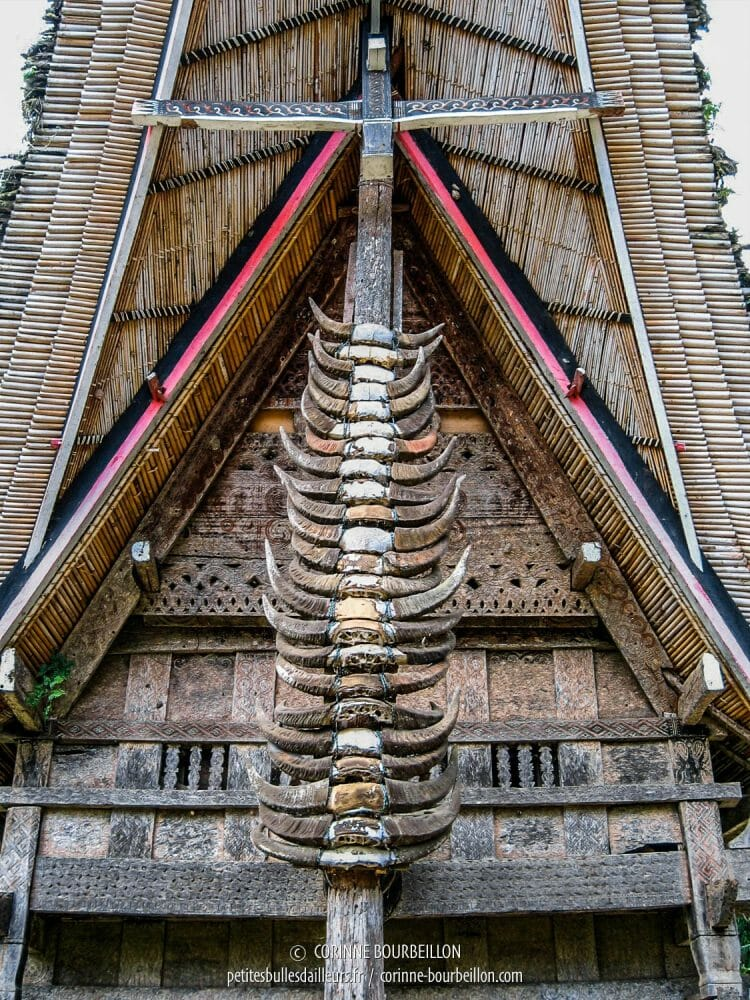 "Details of a traditional ""tongkonan"" house in Ket'e Kesu. (Toraja Country, Sulawesi, Indonesia, July 2007)"
