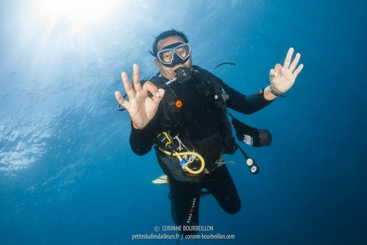 Opo remonte vers la surface, en faisant le signe OK. (Centre-Sulawesi, Indonésie, juillet 2017)