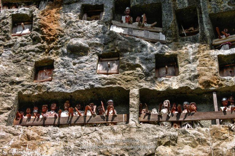 Chaque statue de bois représente un défunt. (Pays Toraja, Sulawesi. Juillet 2007)