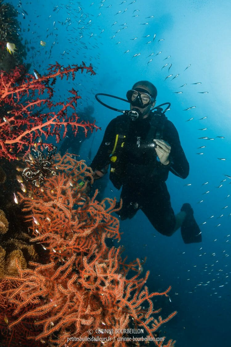 Cedric plays the underwater models behind the corals. (Raja Ampat, West Papua, Indonesia, March 2012)