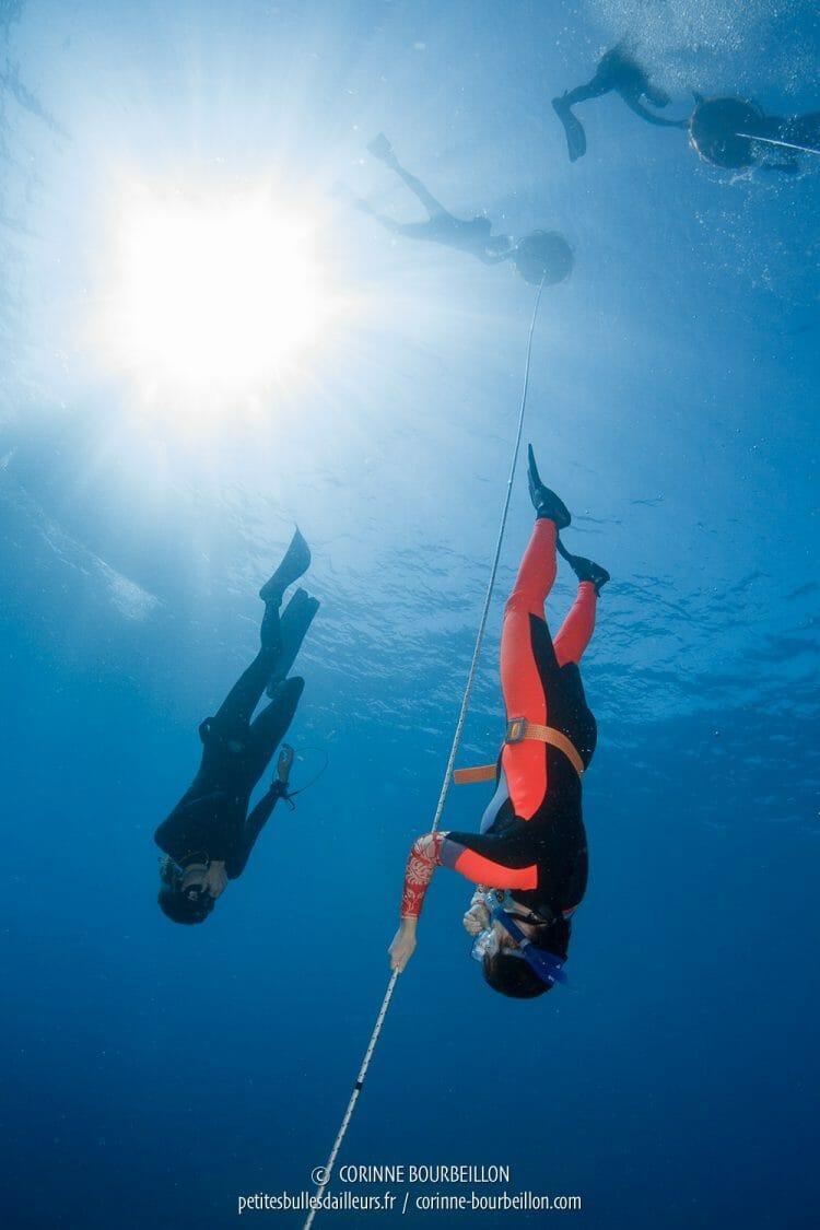 Initiation to apnea. (Komodo, Indonesia, July 2016)