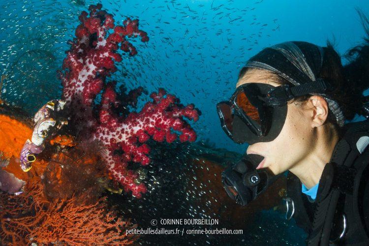 Ma binôme Miyo, fascinée par la vie du récif corallien. (Raja Ampat, Papouasie occidentale, Indonésie, mars 2012)