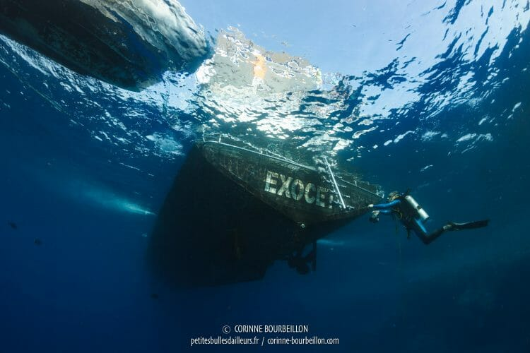 The Exocet is like Port-Salut, it is marked on it ... Practice not to confuse his boat with another, under water! (Red Sea, Egypt, November 2017)
