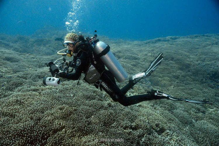 Moi filant avec le courant au-dessus du corail, qui s'étire à perte de vue... (Tubbataha, Philippines, mai 2018)