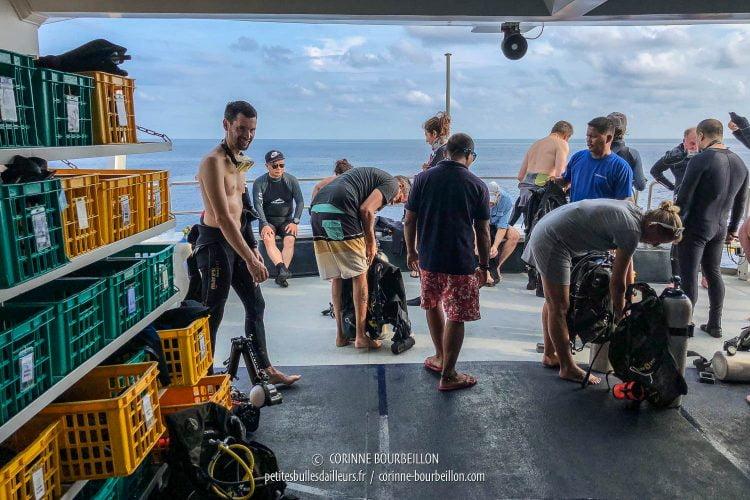 Tout le monde s'affaire avec les équipements de plongée sur le pont inférieur. (Tubbataha, Philippines, mai 2018)