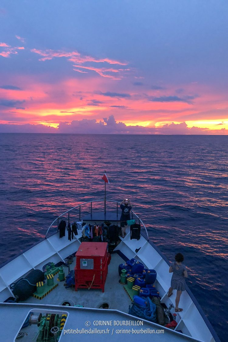 The sun sets the horizon on fire. (Tubbataha, Philippines, May 2018)