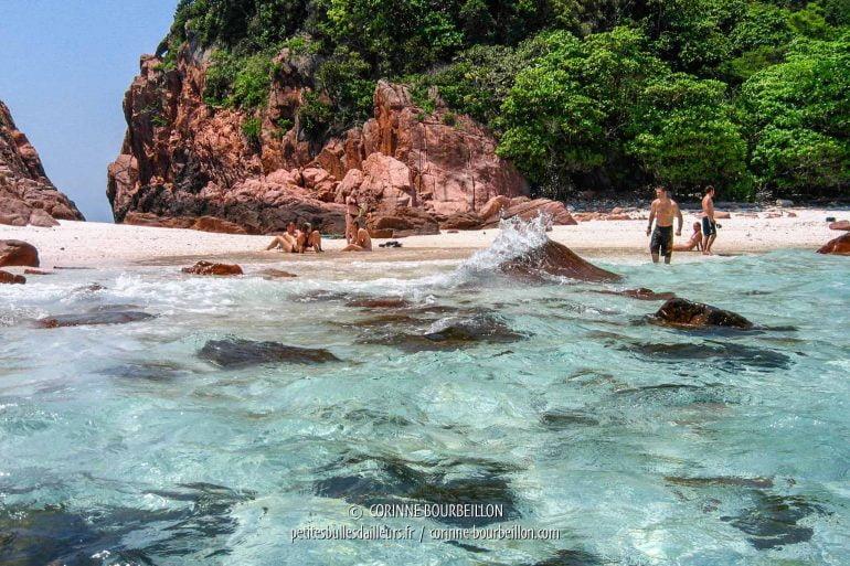 Intervalle de surface sur l'un des îlots proches de Redang. (Malaisie, juillet 2006)