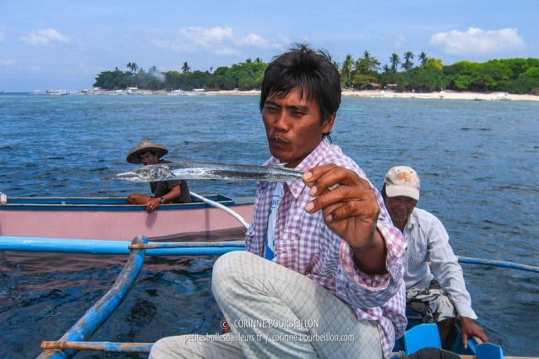 In front of the island of Balicasag, the captain of our banca is clever with a small dried fish. Behind, arrived in their small boats, renters of palms for the tourists. (Philippines, Balicasag, February 2008)