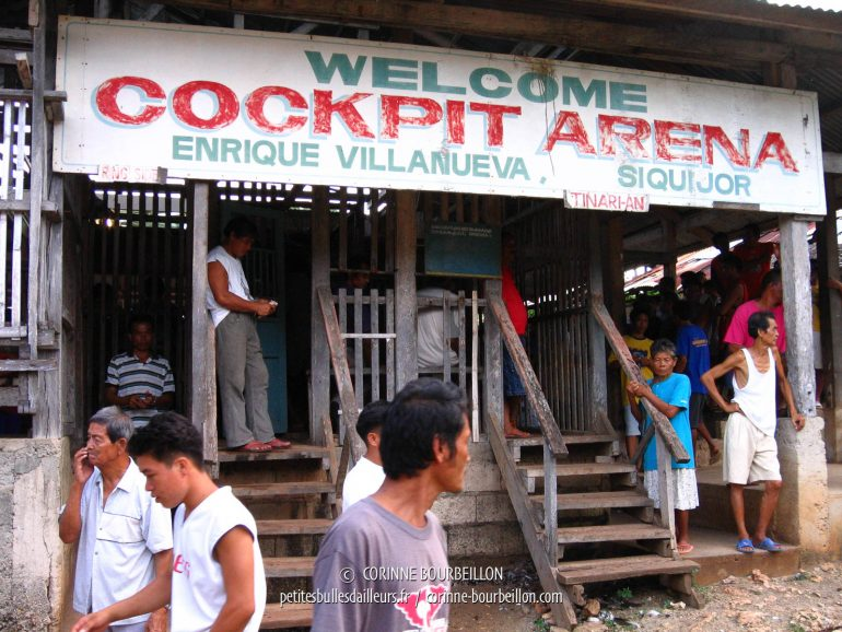 Welcome to the cockfighting arena of the village of Enrique Villanueva. (Siquijor, Philippines, February 2008)