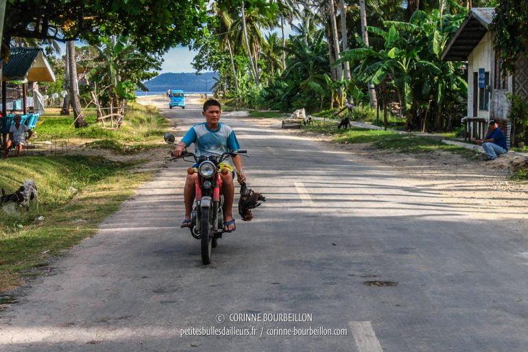Ce jeune homme, le visage triste, vient de quitter l'arène à moto, son coq mort au bout du bras... (Siquijor, Philippines, février 2008)