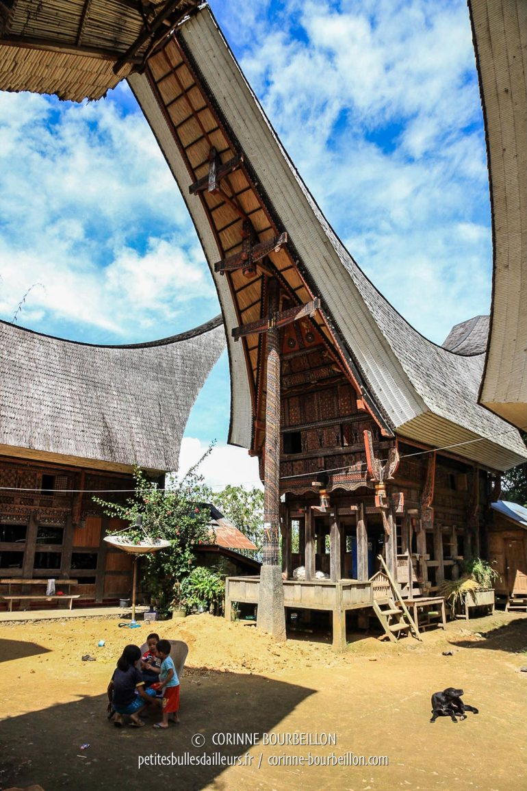 "The children play in the shade of the huge ""tongkonan"" roofs of the rice granaries and dwellings, typical of Toraja country. (Toraja Country, Sulawesi, Indonesia, July 2010)"