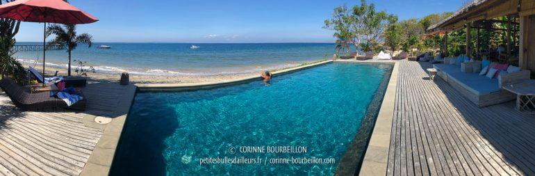 La piscine, notre spot d'observation favori... (Kalimay Dive Resort, Sumbawa, Indonésie, juillet 2018)