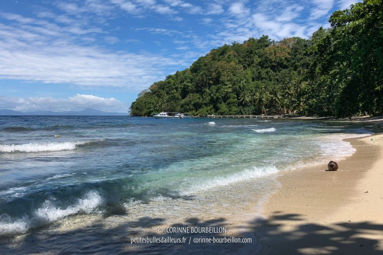 We are not disturbed by the crowd, on the beautiful beach of Sali Bay Resort ... (Sali Kecil, Halmahera, Indonesia, July 2018)