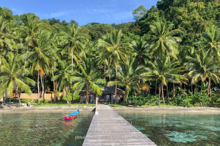 The Sali Bay Resort pontoon facing the ... (Sali Kecil, Halmahera, Indonesia, July 2018)