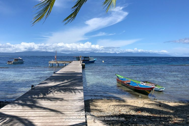 The Sali Bay Resort dock side by side ... (Sali Kecil, Halmahera, Indonesia, July 2018)
