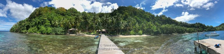 Panoramic view of Sali Kecil from the Sali Bay Resort dock. (Halmahera, Indonesia, July 2018)
