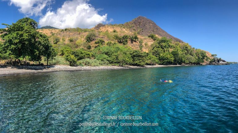 Snorkeling for the surface interval, in a sheltered Sangeang Cove. (Sumbawa, Indonesia, July 2018)
