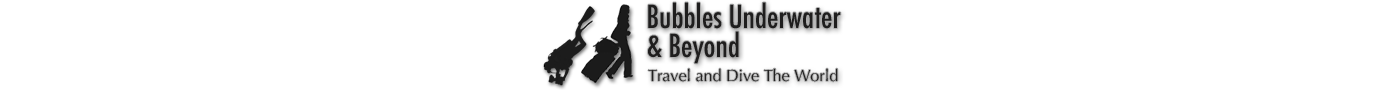 Bubbles Underwater & Beyond - Scuba Diving and Travel Blog