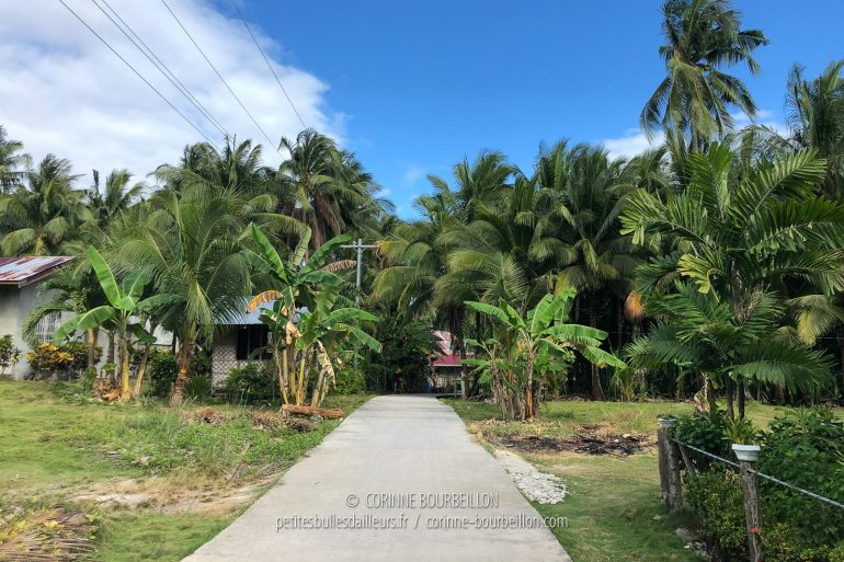 The small road at the back of the resort. (Cabilao, Philippines, February 2019)