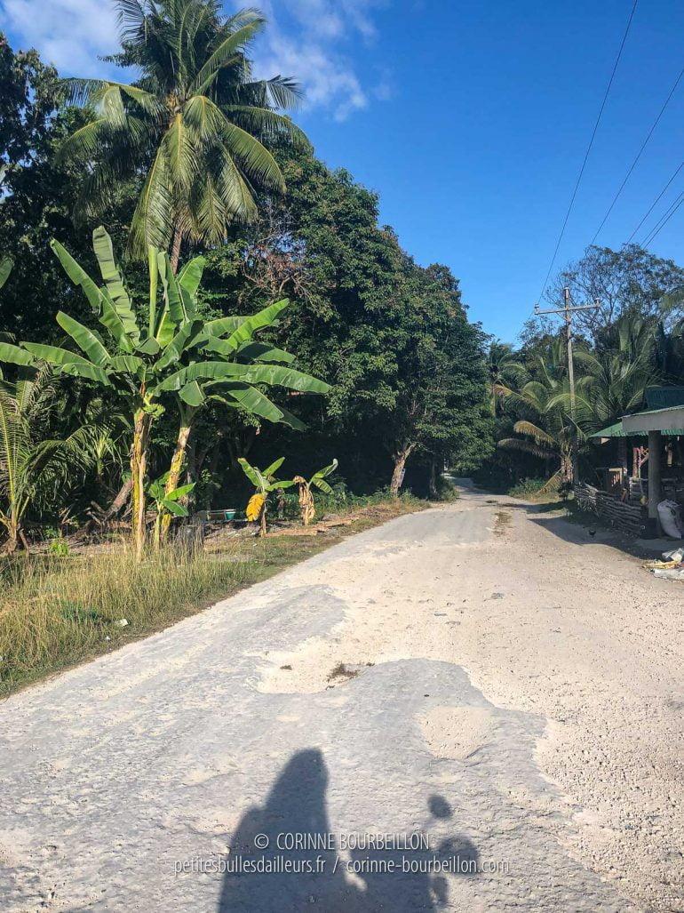 L'une des petites routes de Cabilao, faciles à parcourir en scooter. (Philippines, février 2019)