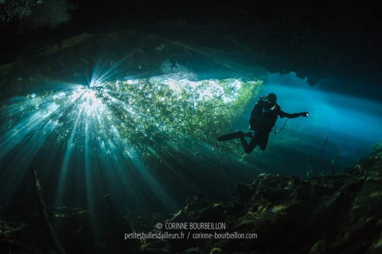 Cenote Ponderosa ou Jardín del Edén. Magnifiques jeux de lumière aquatiques, entre le végétal et le minéral. (Mexique, juillet 2014)