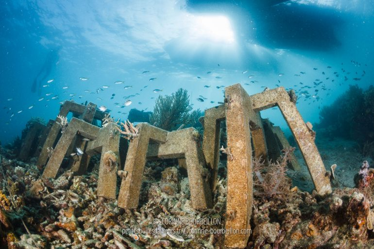 The coral cutting project of the Sulubaaï Foundation in Pangatalan: the coral is fixed on special concrete supports, without plastic or chemical, called SRP modules. The main objective is to reconstruct the reef damaged or destroyed by dynamite fishing. (Philippines, February 2018)
