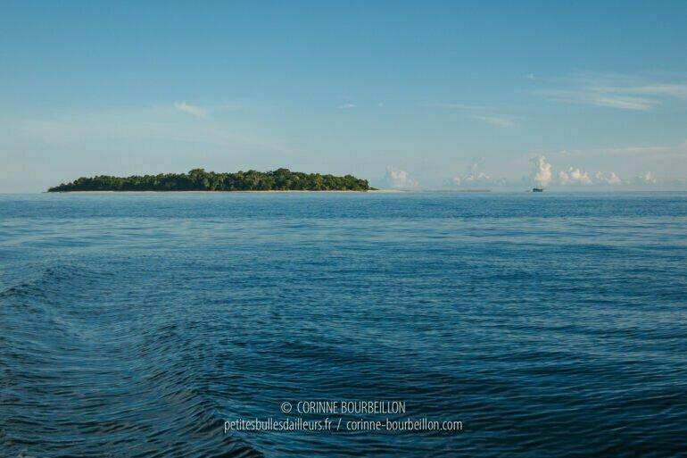 Il y avait autrefois un resort sur l'île de Sangalaki, il est aujourd'hui abandonné. L'île et les tortues qui reviennent y pondre sont désormais protégées. (Bornéo, Indonésie, juillet 2013)