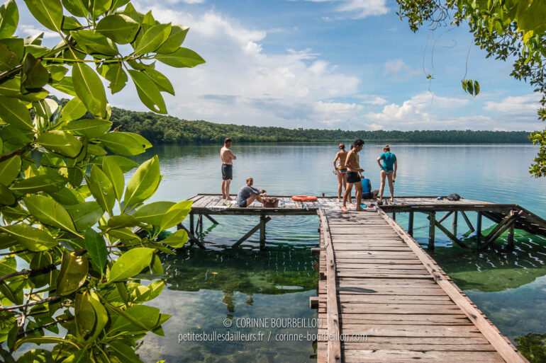 The pontoon that gives access to the jellyfish lake of Kakaban. (Borneo, Indonesia, July 2013)