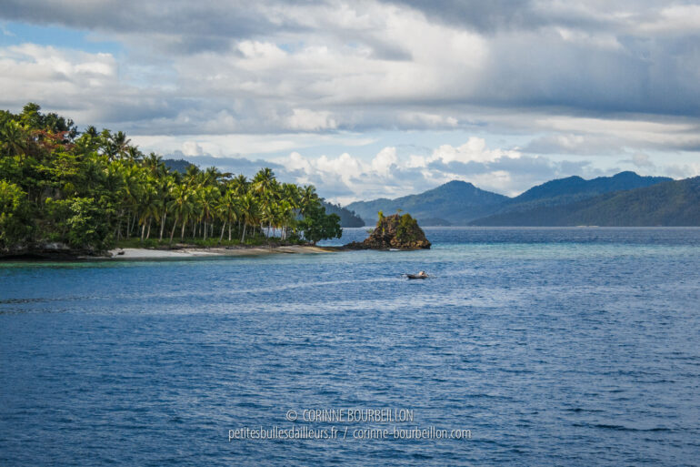 In the Dampier Strait. (Raja Ampat, West Papua, Indonesia, March 2012)
