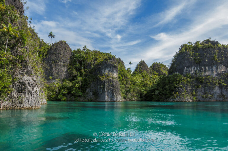Jungle-covered karst islands, plunging into jade green water... Iconic landscape of Raja Ampat. (West Papua, Indonesia, March 2012)
